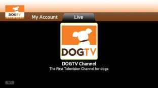 DOGTV Anywhere screenshot